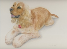 """Duchess"" (pet portrait)"