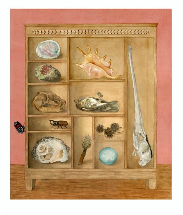 McKeehen Curiosity cabinet 72